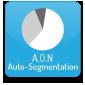 A.O.N Auto-segmentation